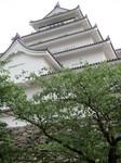 H23.6.16 会津若松巡り 099.JPG